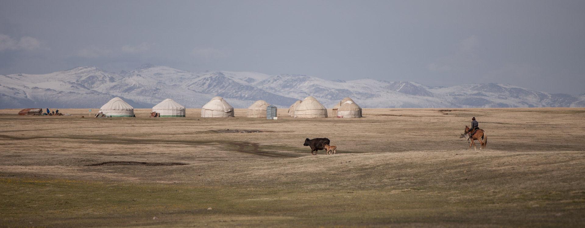 Kirgistan Reiter Und Nomadenvolk